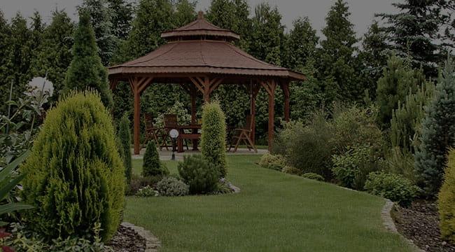 Miami Garden Design
